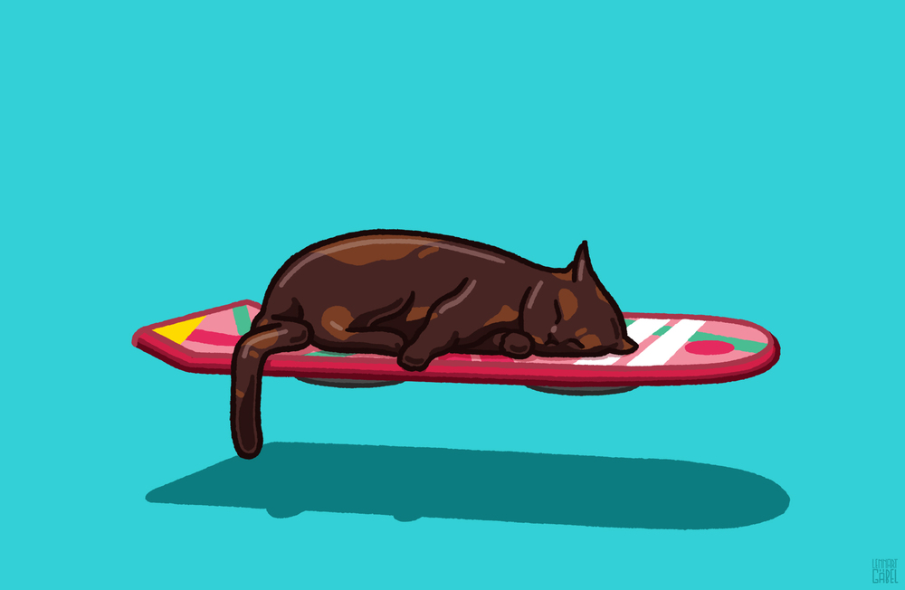 151021_Hoverboard_Cat_desktop.jpg