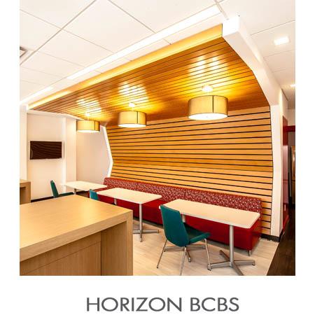 HORIZON BCBS.jpg