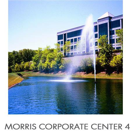 MORRIS CORP 4-Thumbnail Template.jpg