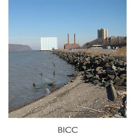 BICC_EnvRemed.jpg