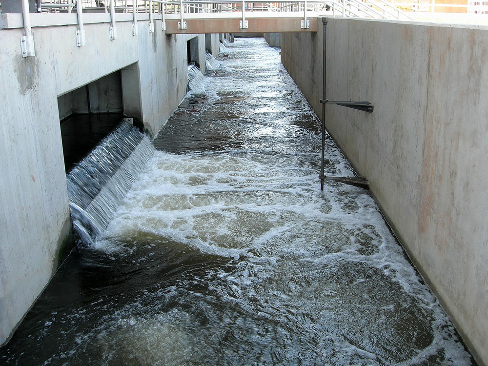 Filter effluent_.JPG