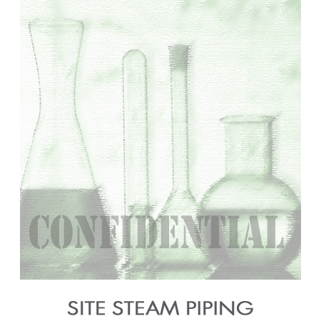 Site_Steam_Piping.jpg
