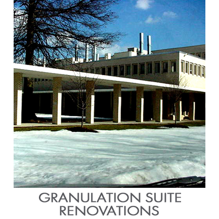 Granulation_Suite.jpg