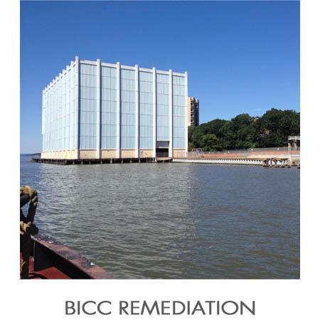 BICC_Public.jpg