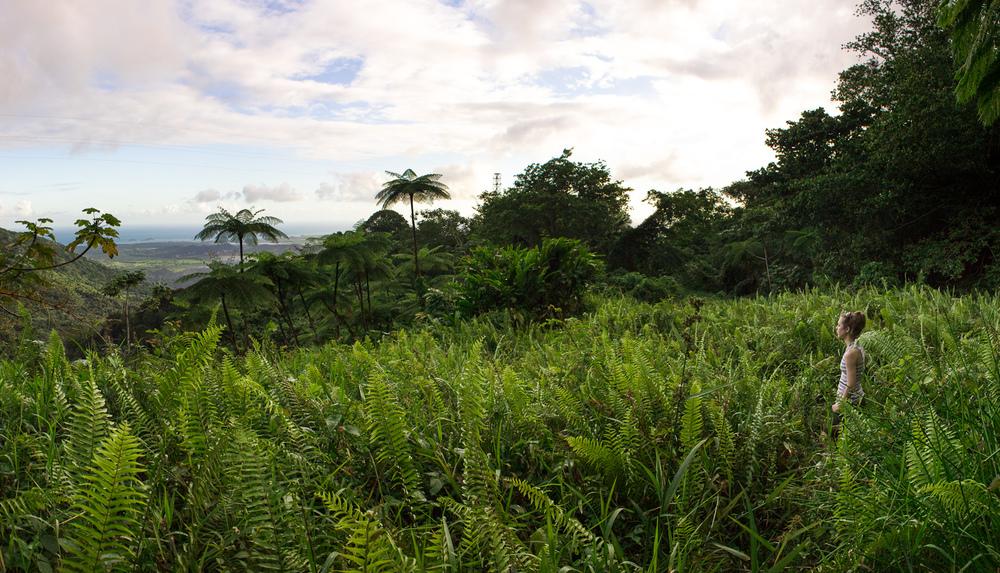 FSP_PuertoRico_-5.jpg