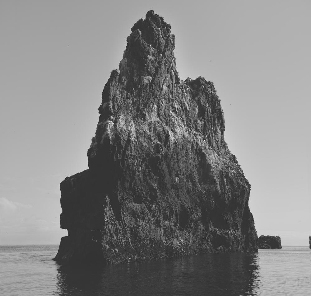 marino thorlaciusfront-0006.jpg