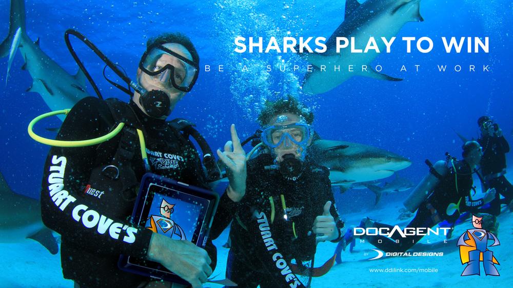 04_Sharks.jpg