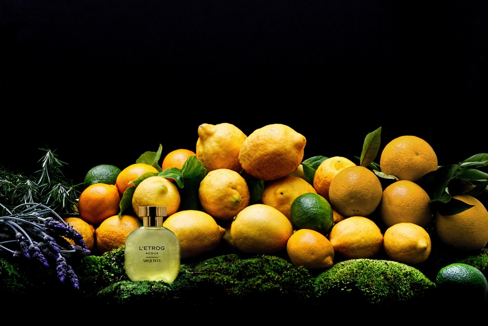 Hernandez Greene - Arquiste Still Life Styling