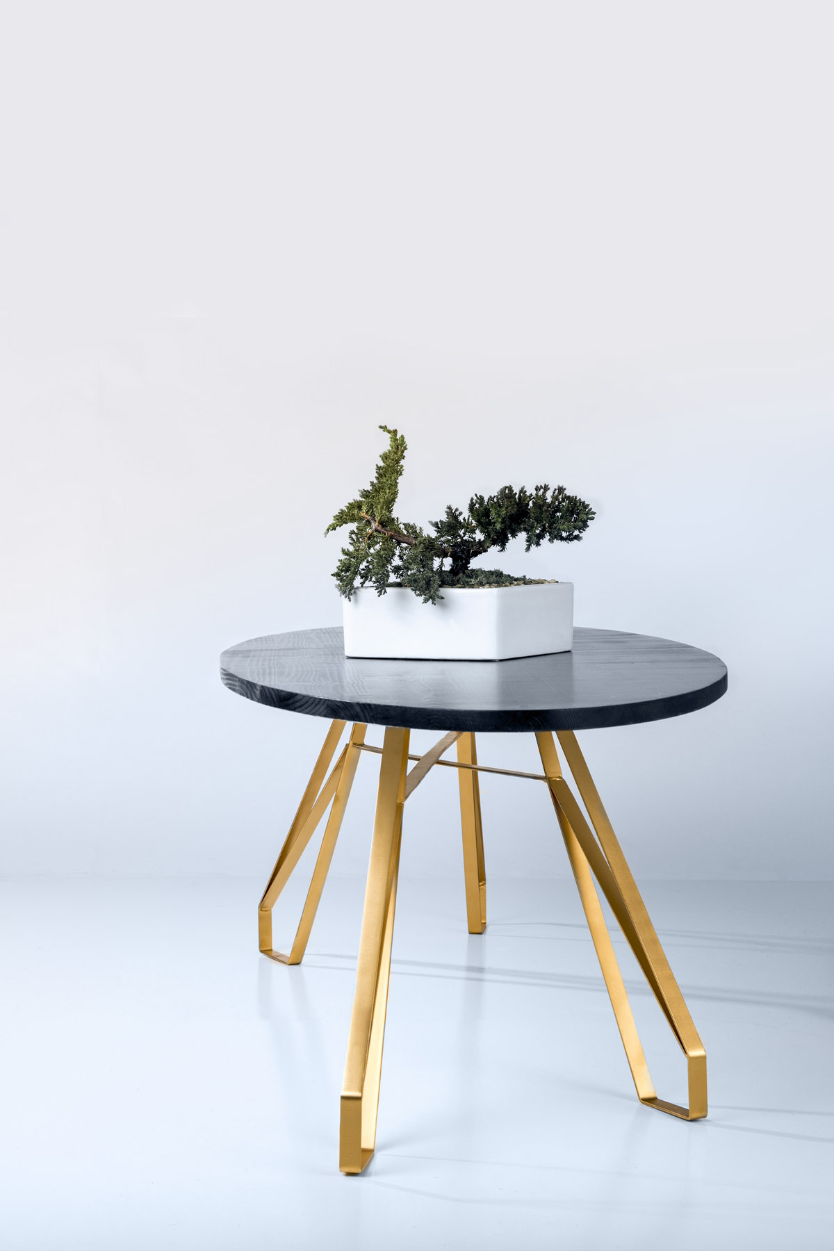 Monroe Coffee Table — ANTON MAKA DESIGNS