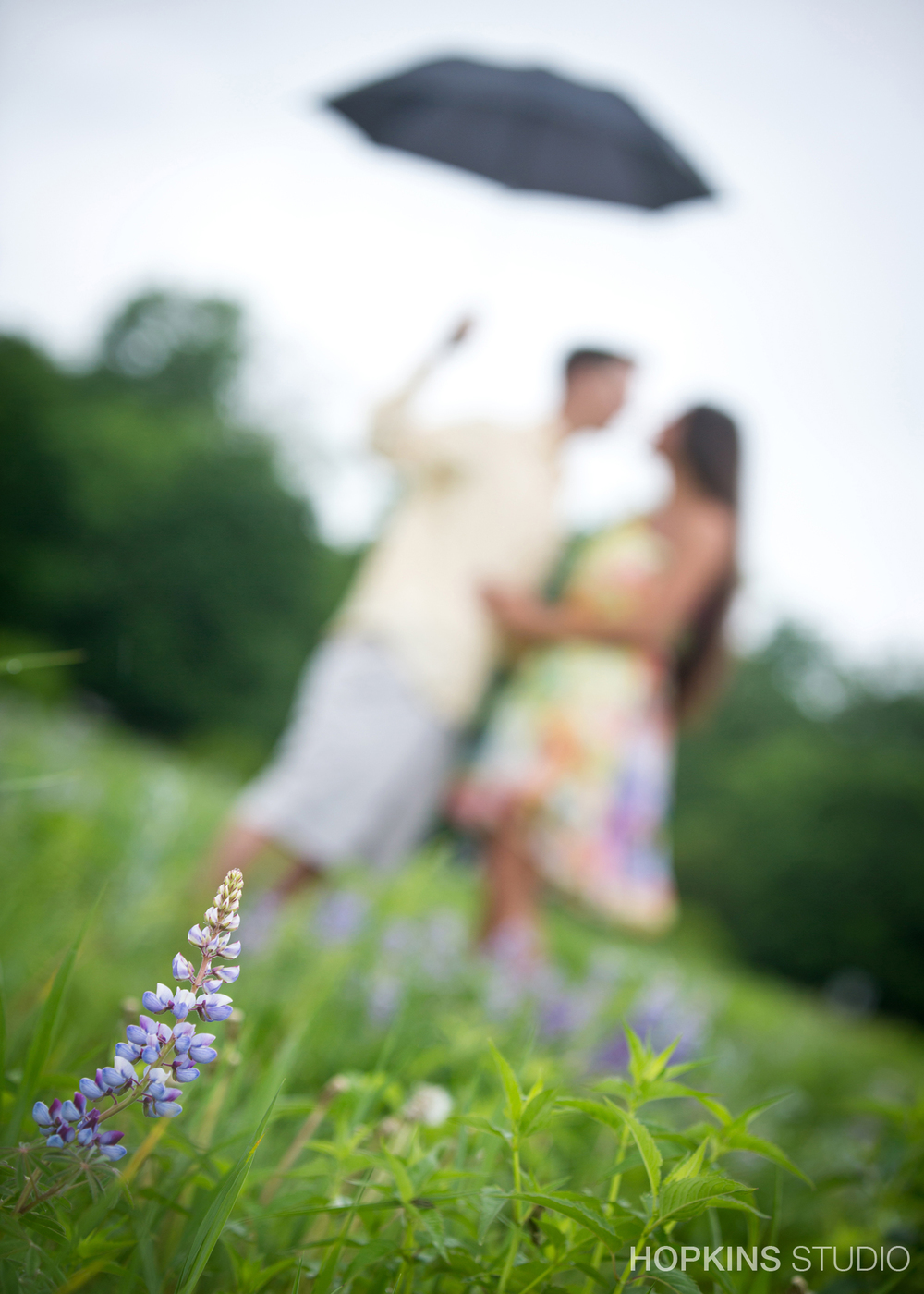 engagement-photo-St-Jo-Stevensville_Niles _01.jpg