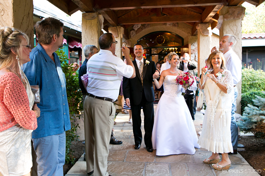 wedding-photography-Tosi's-Restaurant-Stevensville-Southwest-Michigan-weddings_80.jpg