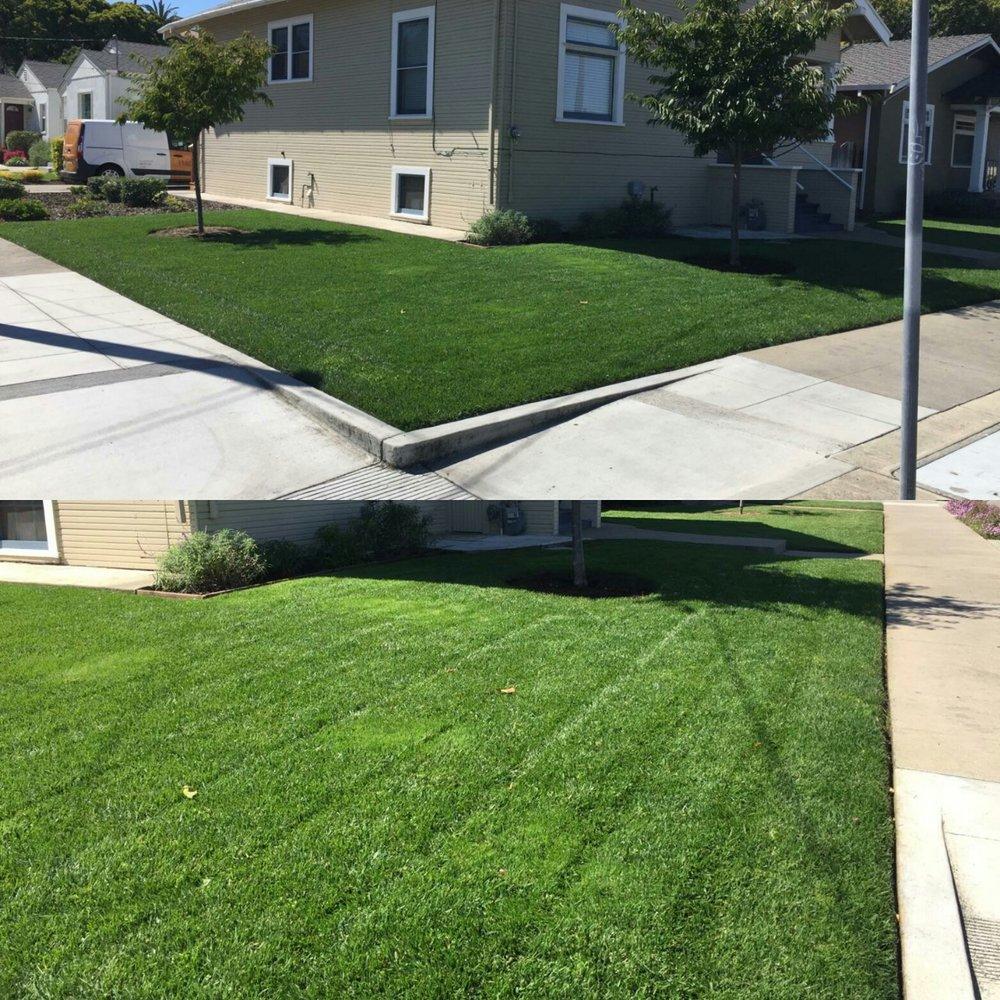 lawn program