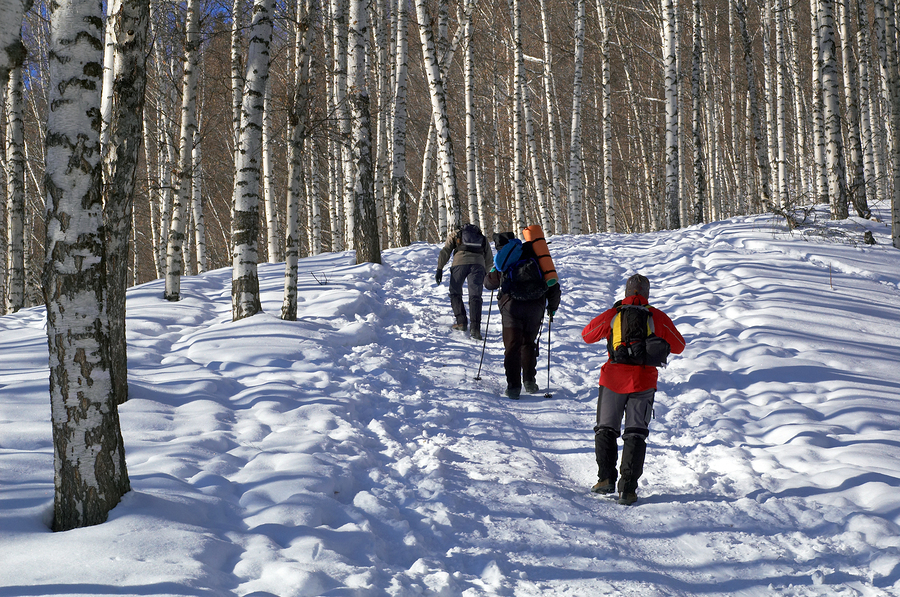 bigstock-Three-Man-Snowshoer-In-Winter--2586703.jpg