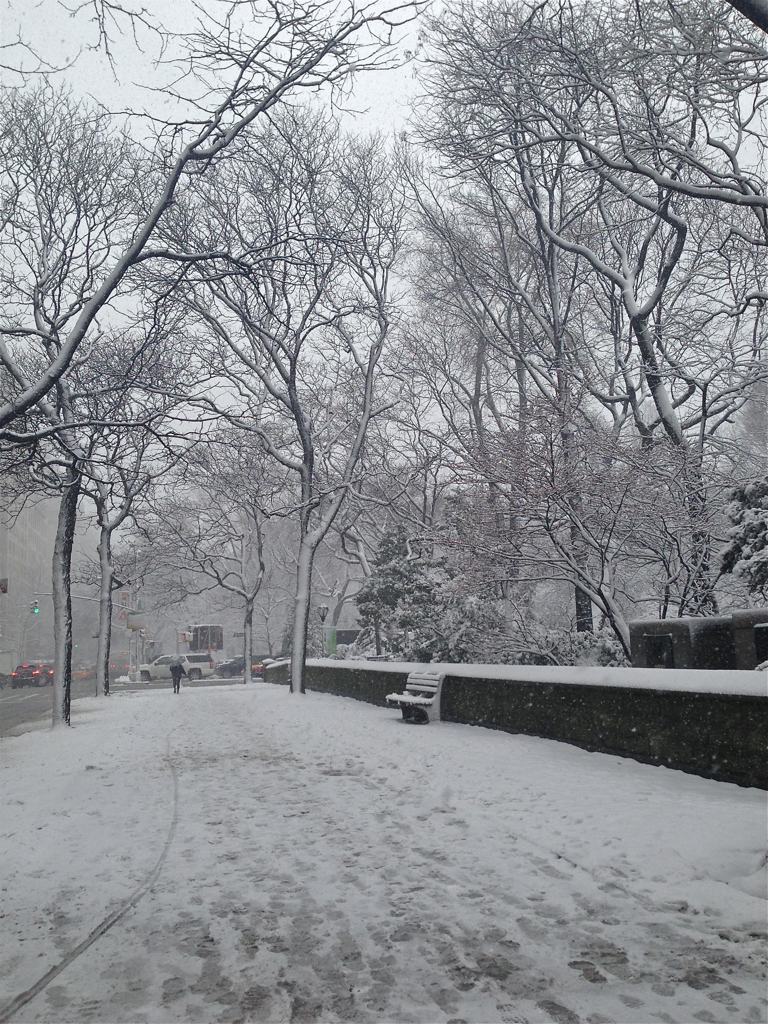 {snowy Fifth Avenue}