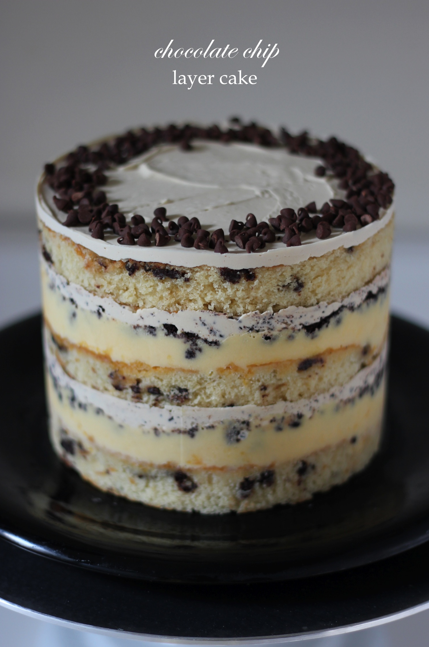 chocolatechipcake1