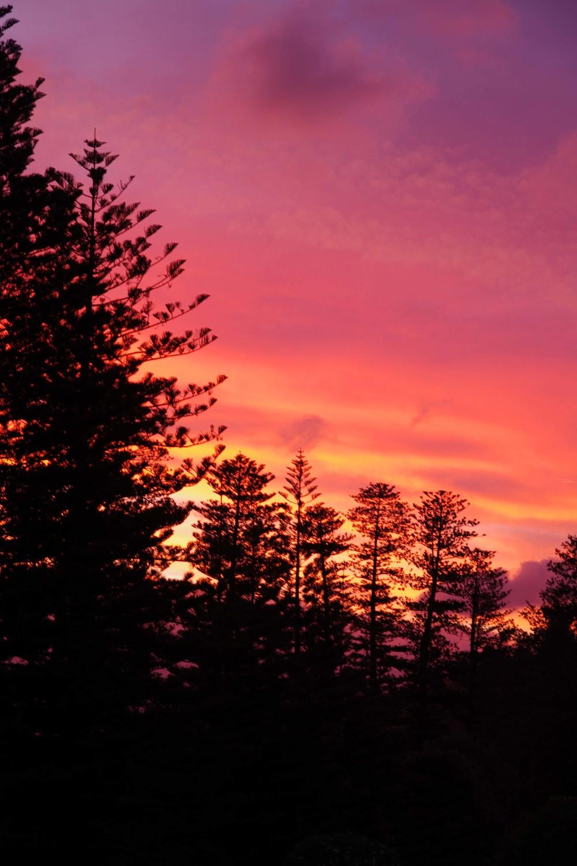 Sunsets over Kingston