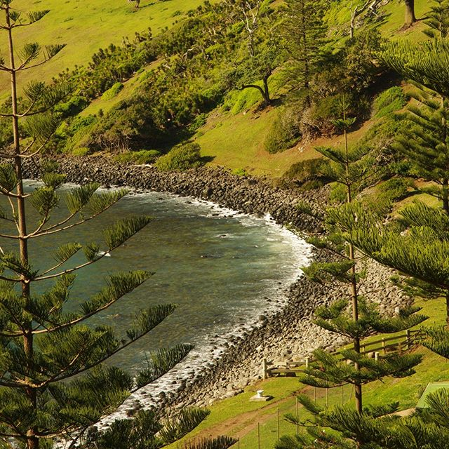 Ball Bay at Norfolk Island