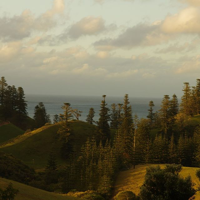 Dusk on Norfolk Island, Looking toward Cockpit lookout