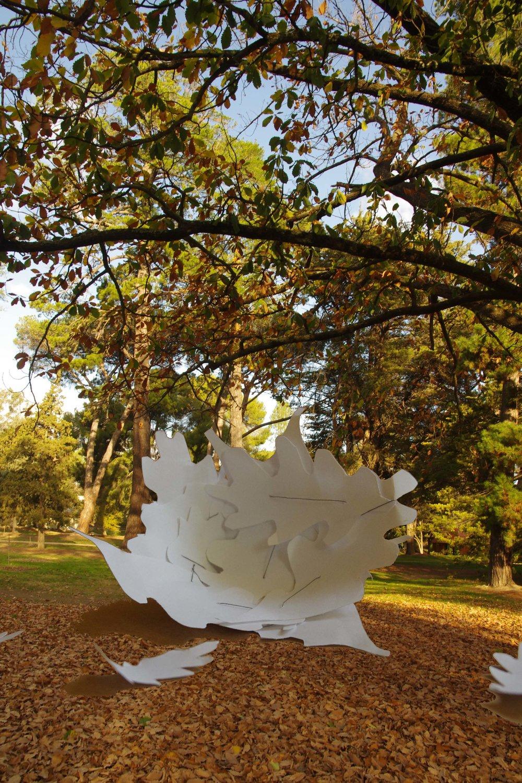 Leaf Nest