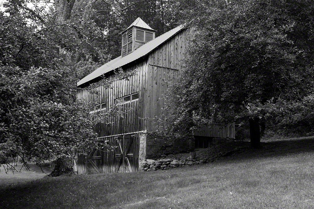 The barn, surrounded by fruit trees and silence.