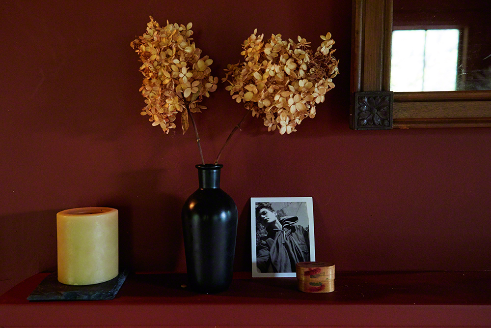 On the mantel in the living room, next to hydrangeas from the garden, rests a Polaroid of Missy which I shot many moons ago in upstate New York.
