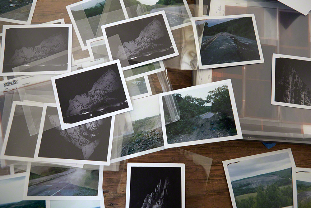 4x5 Polaroids from Staging Nature, and various projects.