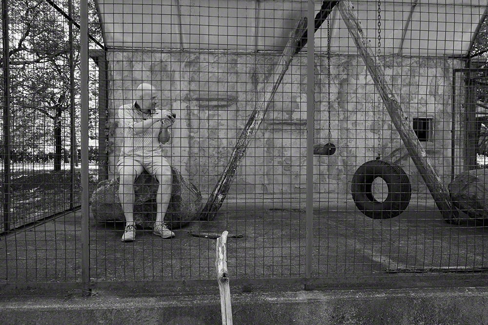 Kessler inside the monkey cage at the Catskill Game Farm, a former zoo which closed down in 2006.