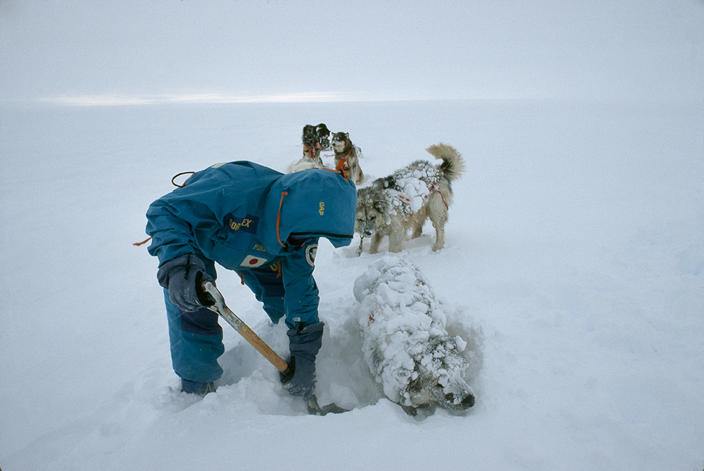 First National Geographic assignment in 1989 was to write about Trans Antarctica Expedition that traversed Antarctica by dogsled. Photo courtesy of Jon Bowermaster.