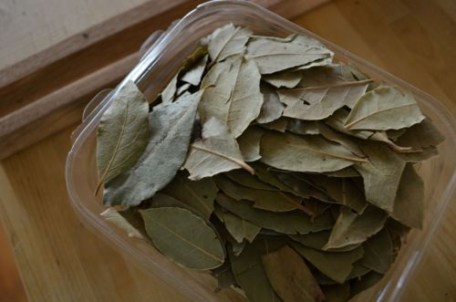 1 (count one!) (count not the whole container!) bay leaf. crushed.