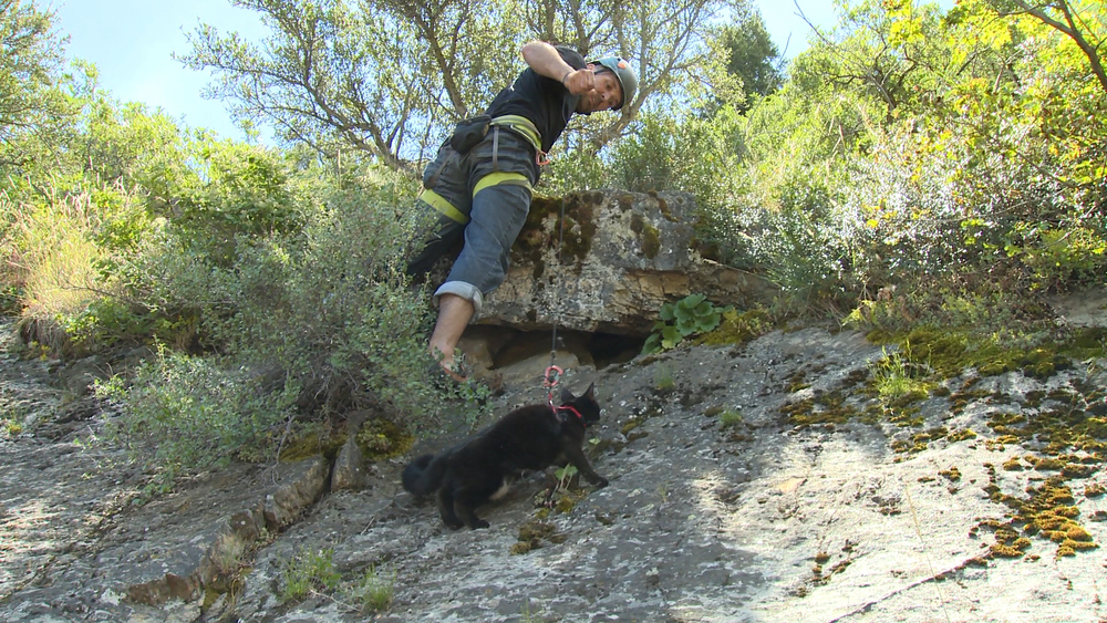 Salt Lake City, Utah:  Craig Armstrong and his cat Millie hike through rough terrain on Mount Olympus, a climbing hotspot for these adventurous companions.  An avid rock climber, Craig takes Millie with him to scale mountains in Utah's wild frontier. Thanks to Craig's feline adventure partner, these two never have to climb a mountain alone. (Photo credit: © National Geographic Channel / Sam Prigg)