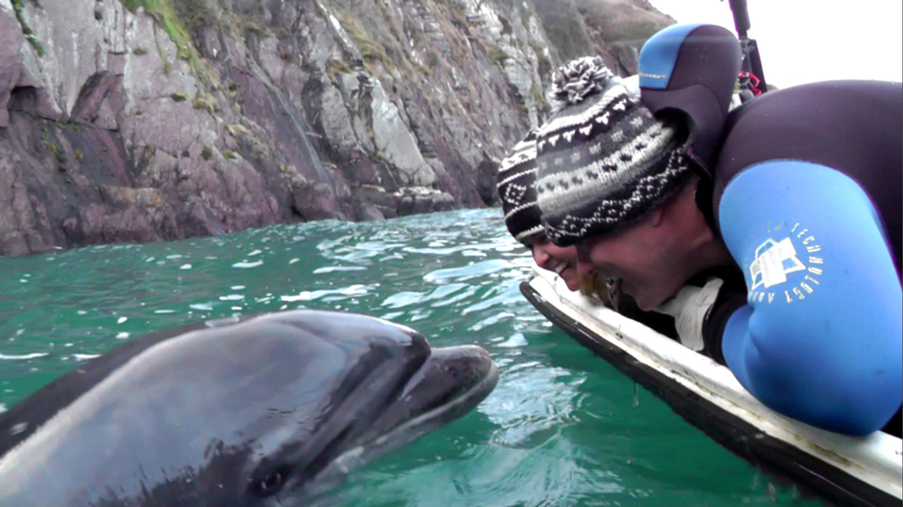 DINGLE, Ireland - Americans Chris and Coley Staab lean over the edge of a boat to get up and close and personal with Coley's unlikely animal friend, Fungi the dolphin. Coley has been visiting Fungi at least once a year for over a decade to swim with him in his home of Dingle, Ireland. The strong connection between these two can't be broken, and is strengthened with every trip Coley makes. (National Geographic Channels/Nicole Staab)