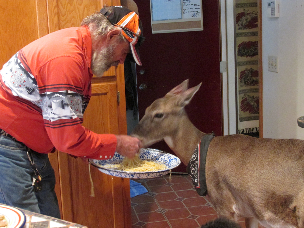 CANAL FULTON, Ohio - Steve Heathman feeds his unlikely animal friend Dillie the deer, who has a very veracious appetite. Heathman's wife, Melanie Butera, brought Dillie home after the wild, blind deer was brought to her emergency vet clinic. The two took in the deer and raised her as a part of their family. (National Geographic Channels/Melanie Butera)