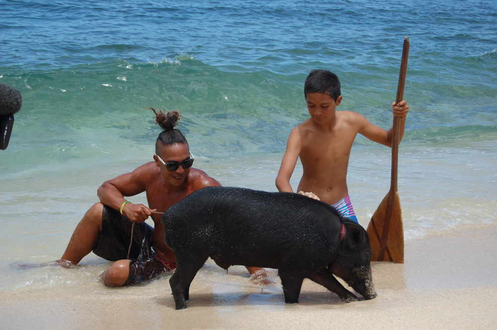 OAHU, Hawaii - Kai Holt shows off his unlikely animal friend, Kama the pig, at the beach. This inseparable duo shares a bed, eats fruits from the same tree, and even surfs together! (National Geographic Channels/Julia Dorn)