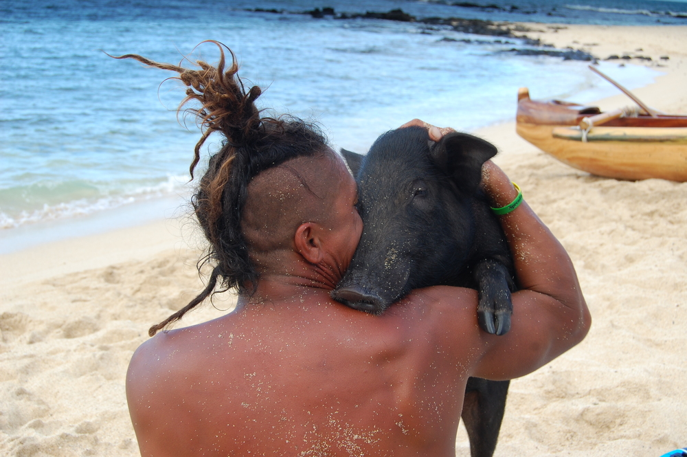 OAHU, Hawaii - Kama the pig gives a hug to his unlikely friend, Kai Holt. This inseparable duo shares a bed, eats fruits from the same tree, and even surfs together! (National Geographic Channels/Julia Dorn)