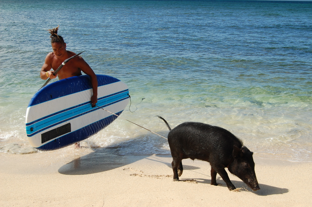 OAHU, Hawaii - Kai Holt carries in his board after catching some waves with his unlikely animal friend, Kama the pig.  This inseparable duo shares a bed, eats fruits from the same tree, and even surfs together! (National Geographic Channels/Julia Dorn)