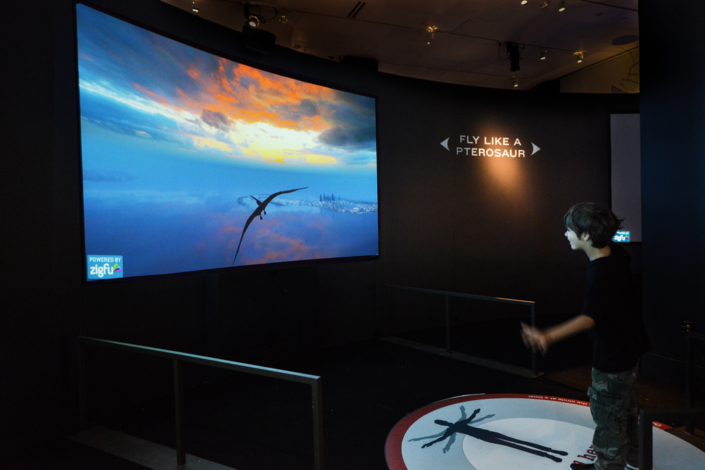 5. Fly Like A Pterosaur Exhibit.jpg