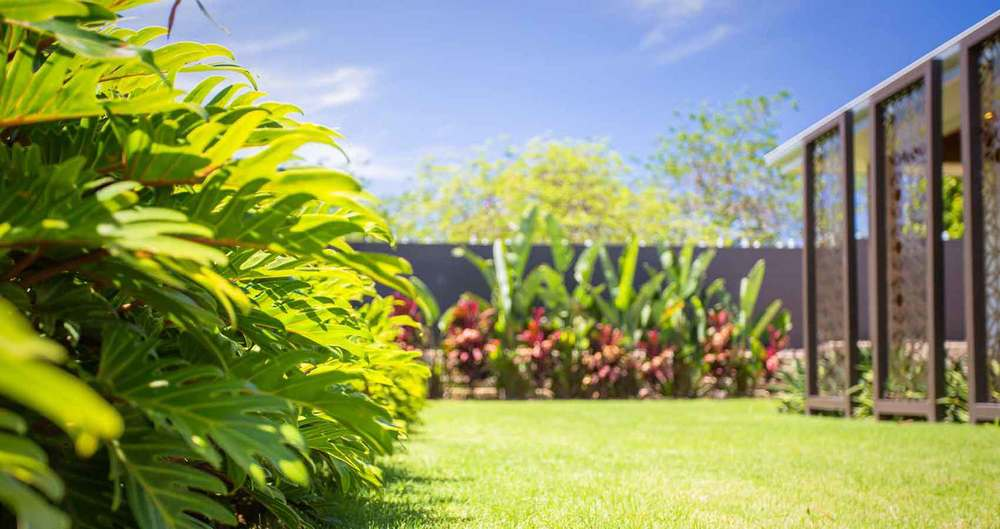 Portfolio rubi landscape design brisbane for Garden designs brisbane