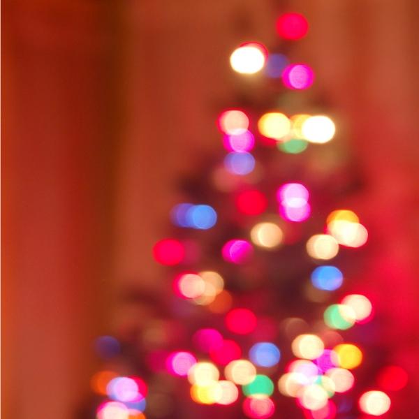 sparklytree.jpg