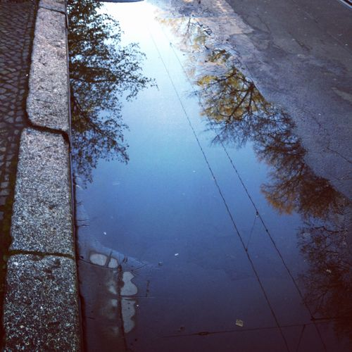 morning.reflections.berlin.stephanielevy