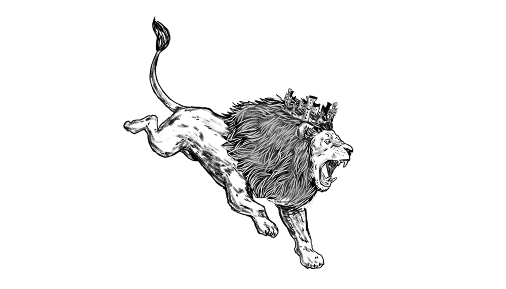 aslan-dive-sml.png