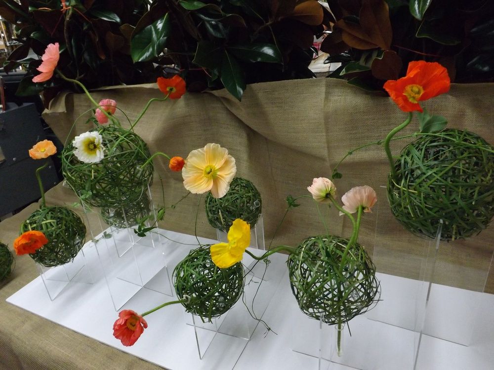 Woven grass balls with water tubes and poppies.