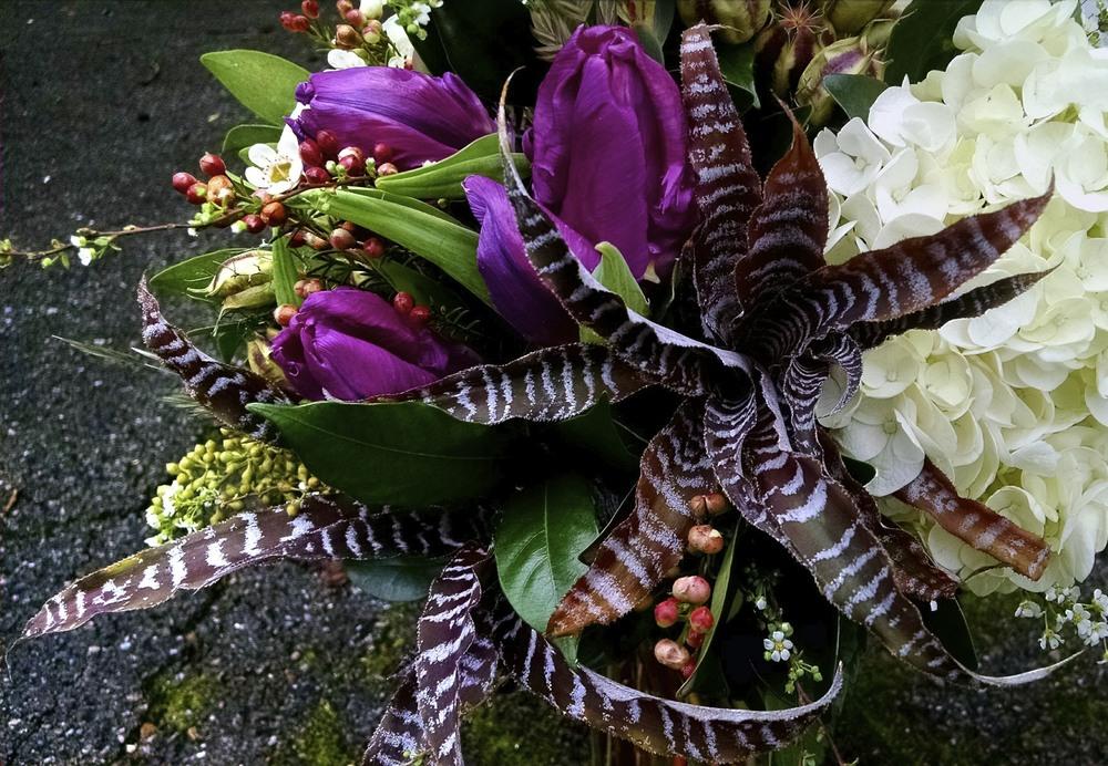 Bromeliads, parrot tulips, hydrangea, wax flower, nigella pods