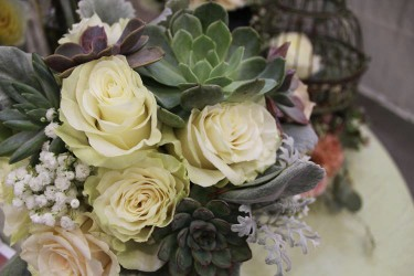Succulents, Roses, Babies Breath, Dusty Miller