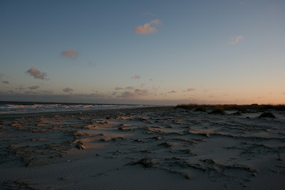 Cumberland Island, before the storm.