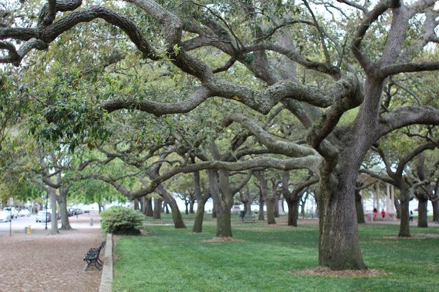 Charleston3.jpg
