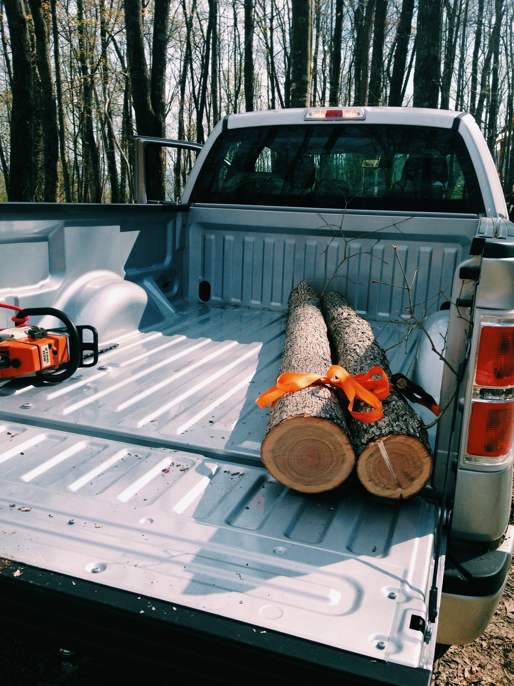 Logs in the truck, ready to go home.