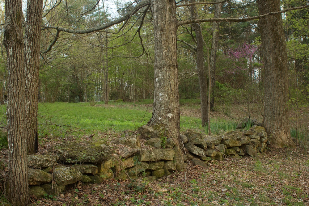 An old dry stone wall terraces the front yard.