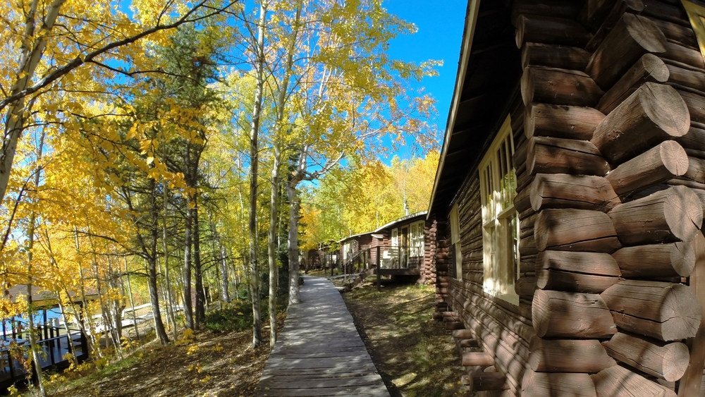 Trout Camp Walkway and Cabins