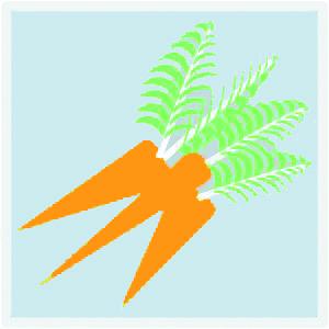 UrbanFarming_300_carrots pop.jpg