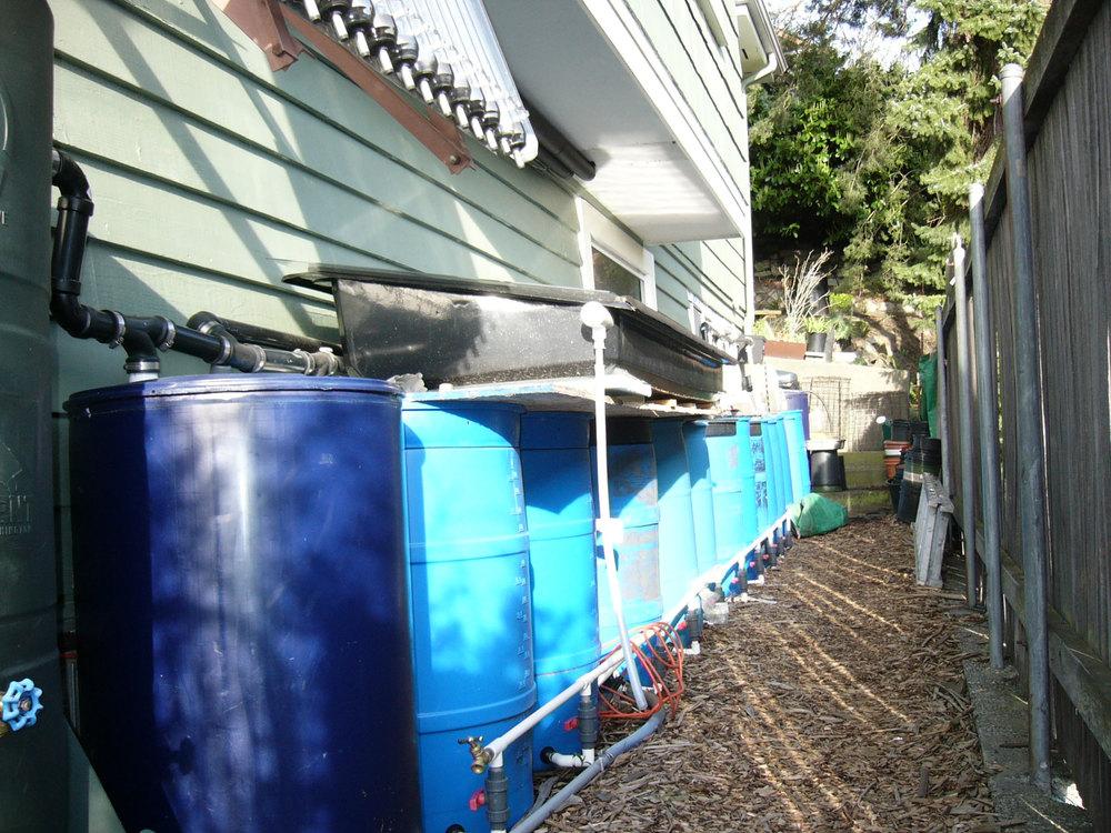 water_barrels.jpg